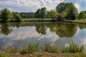 Garda Hill Agriturismo Leistungen Grüne oase